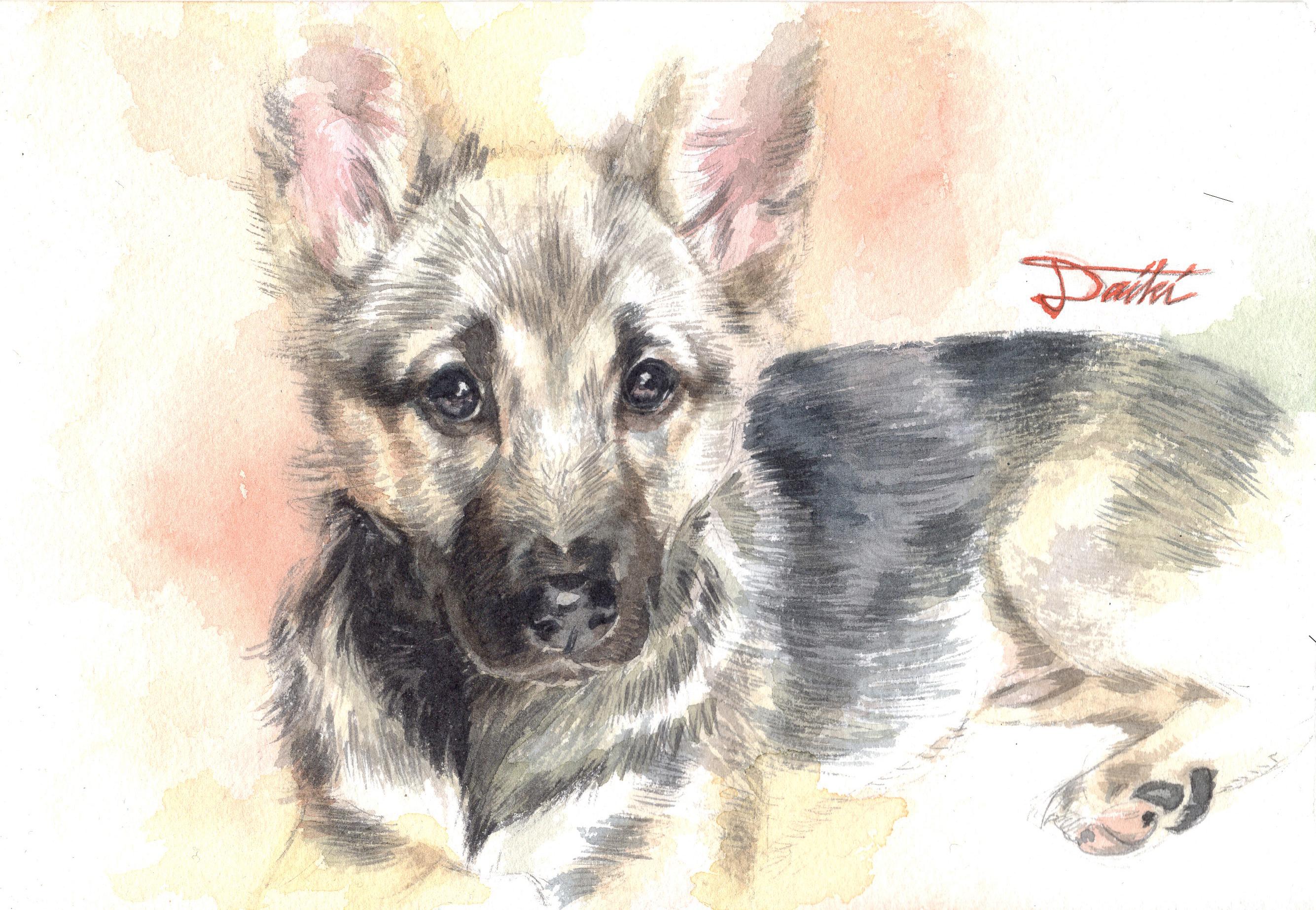 ペット 愛犬イラスト