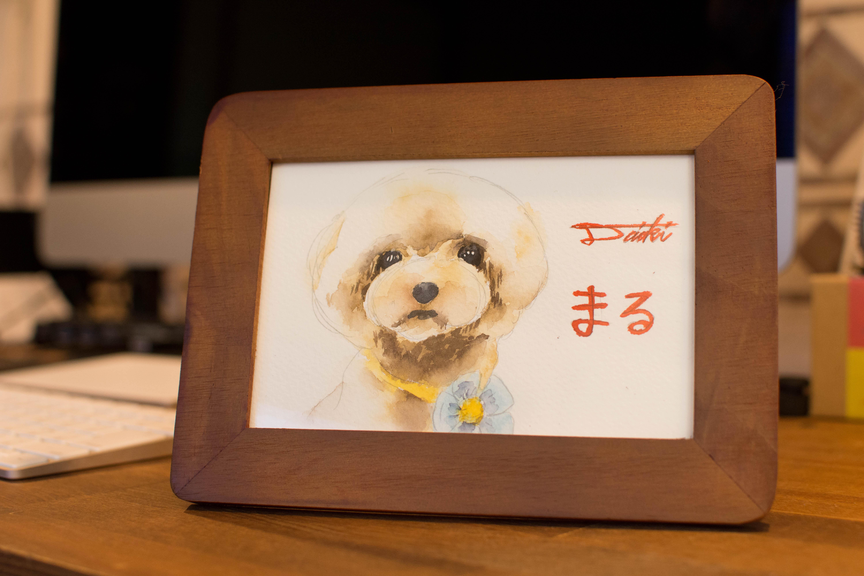 トイプードル 水彩愛犬イラスト