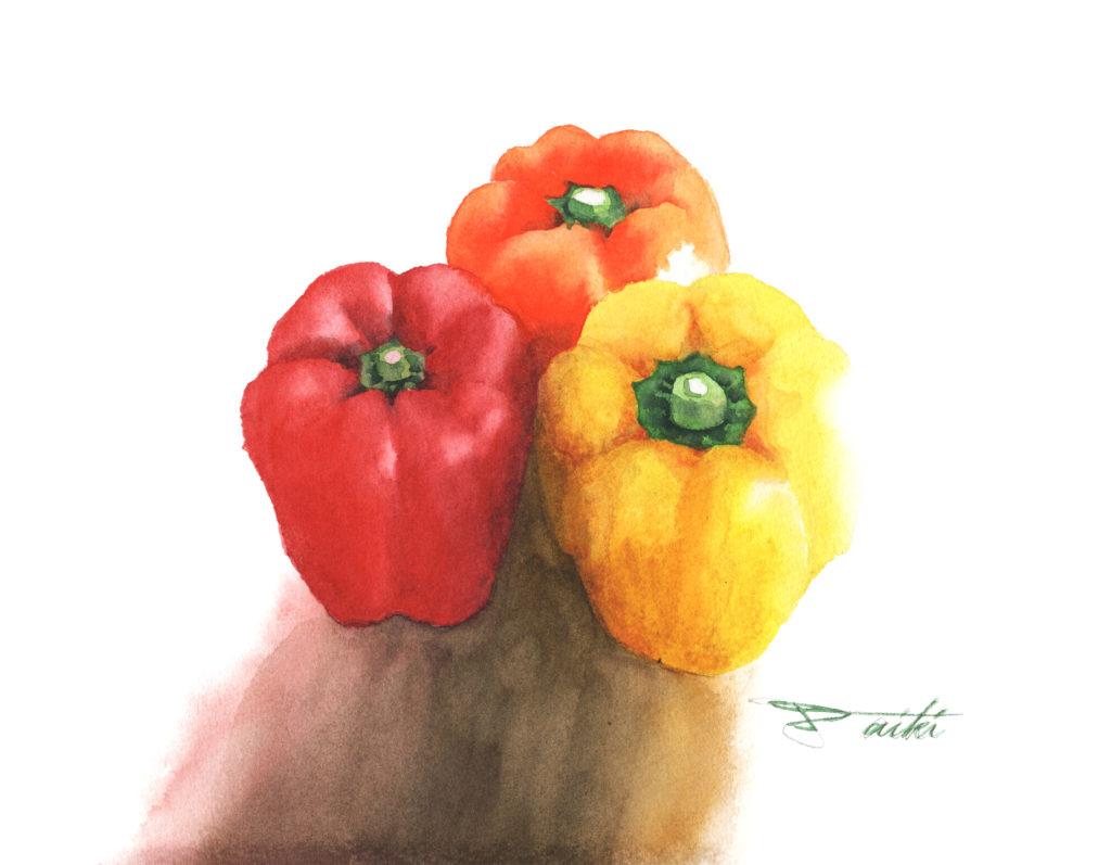 パプリカ 水彩野菜イラスト